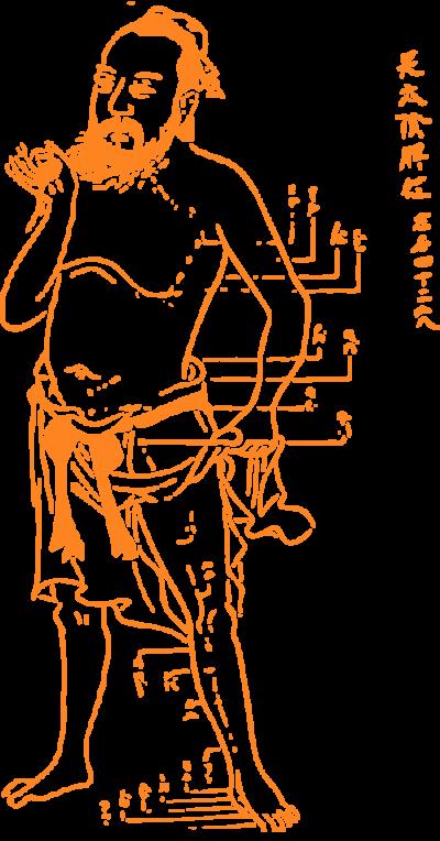 Man Acupuncture Meridians